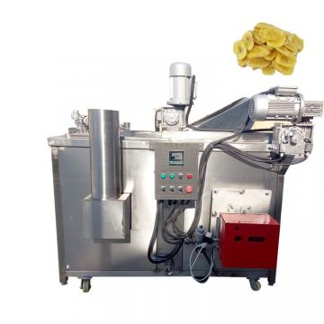 China Electric Deep Fryer Oil Water Fryer Machine