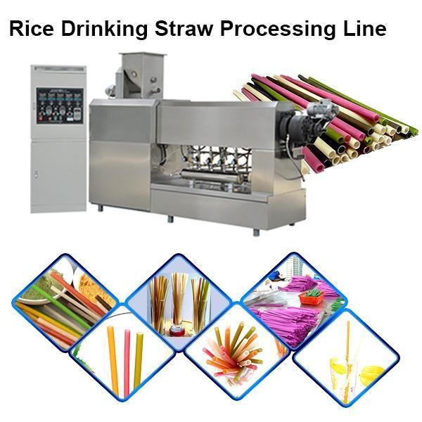 100-150kg/H Big Capacity Biodegradable Custom Rice Straw Making Machine