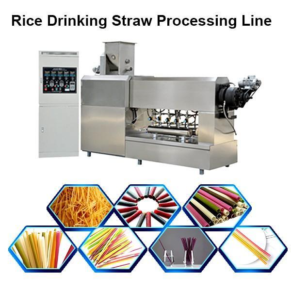 Eco Friendly Gadgets Custom Drinking Straw Making Extruder Line