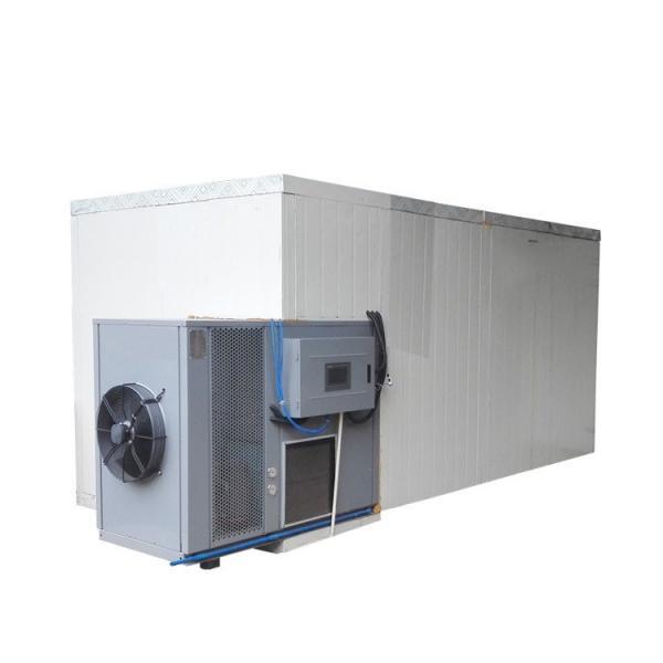 Nigeria Electric Freeze Catfish Shrimp Drying Machine Hemp Fish Dryer Squid Seafood Dehydrator Machine