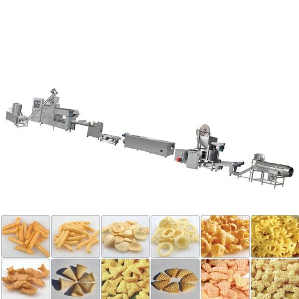 Pet Food Dog Food Floating Sinking Fish Feed Production Line
